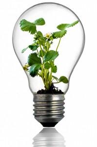 innovation_offset